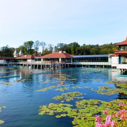 Лечение и отдых в Венгрии на озере Хевиз